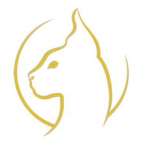 Gold Sphynx